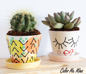 Burr Ridge Cute Planters