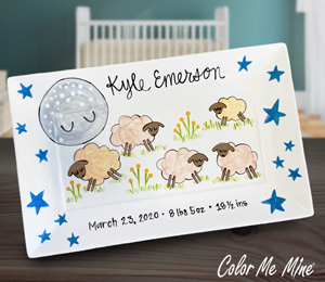 Burr Ridge Baby Announcement